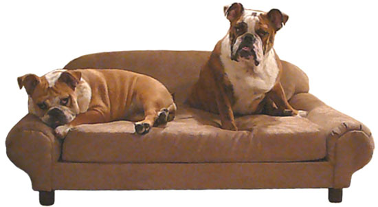 Premier Dog Furniture Real Pet Furniture