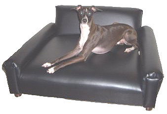 Mega Medium Modern Pet Sofa