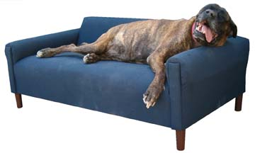 Extra Extra Large Pet Sofa